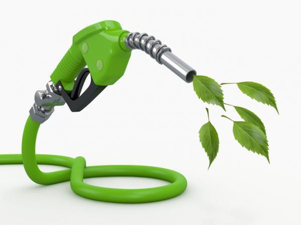 2021/02/el_biocombustible_es_una_energia_renovable_1536_600.jpg